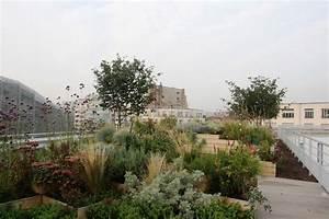 Un Jardin Sur Le Toit : piscine molitor un jardin sur le toit jardins de france ~ Preciouscoupons.com Idées de Décoration