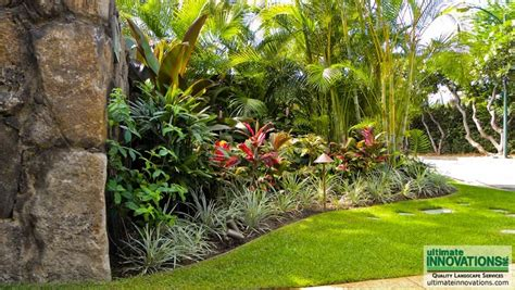 hawaii landscaping ideas landscaping hawaii newsonair org