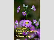 Lustige Karten zum Geburtstag gaidaphotos Fotos und Bilder