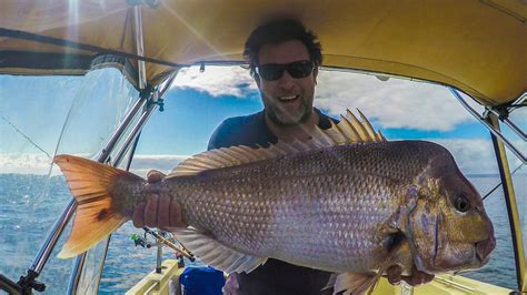 melbourne snapper fishing early season big red port