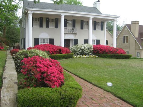 Azalea With Bushes For Driveway Circle