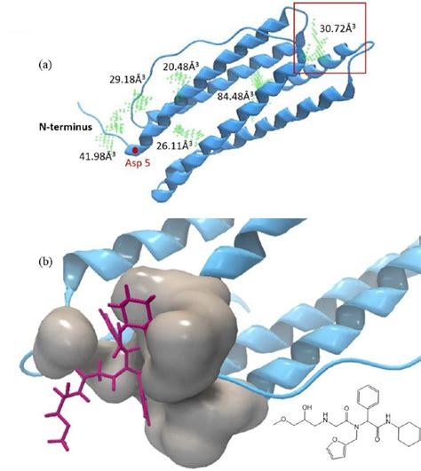 Molecular docking of ligand SJ047 into ferritin ...