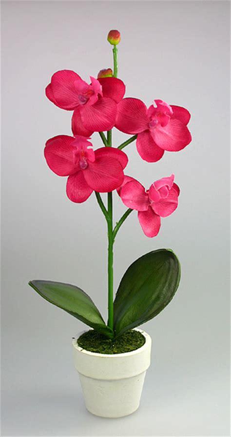 soigner les orchidees en pot le petit pot de fleur orchid 233 e d 233 coration de table mariage mariage