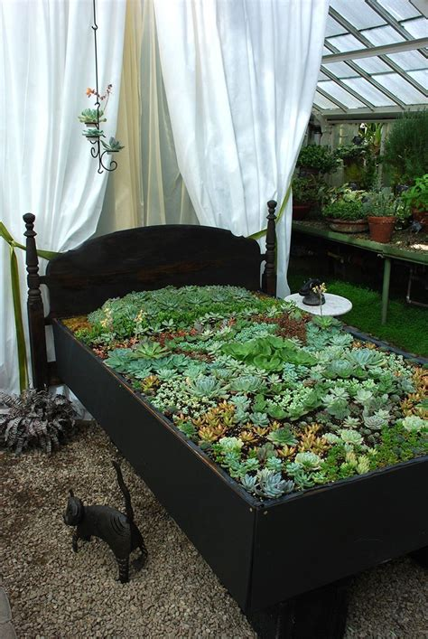 succulent flower bed rethink the way you see a bed of succulents gardenfun diy gardening ideas pinterest