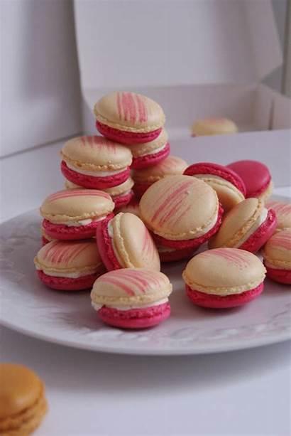 Macarons Vanilla Recipes Macaron Raspberry Sweet Cake