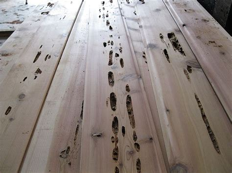 pecky incense cedar boards closeup buffalo lumber