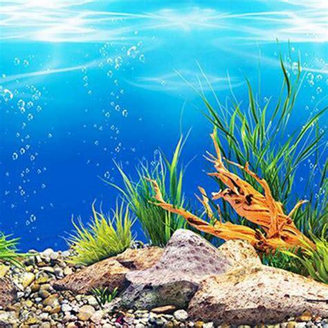 pr aquarium background paper hd picture