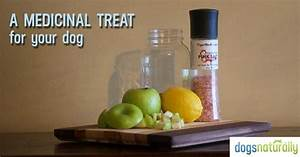 fermented apples a healthy treat for your dog