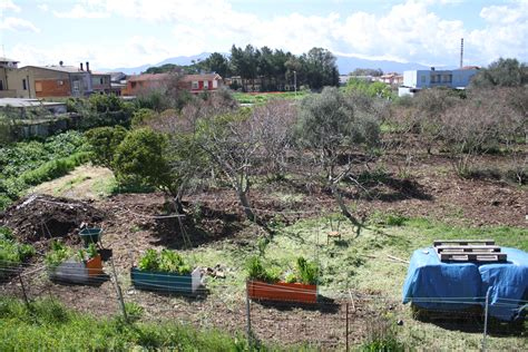 giardino roccioso progetto un giardino roccioso in s ortu de tziviriu san gavino