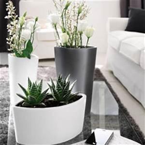 Pot Pour Plante Intérieur : bac a fleur interieur design cool casa mesh pot rserve dueau xx cm granite with bac a fleur ~ Melissatoandfro.com Idées de Décoration