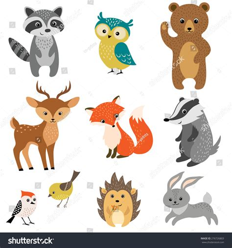 Set Cute Woodland Animals Isolated On Stock Vector