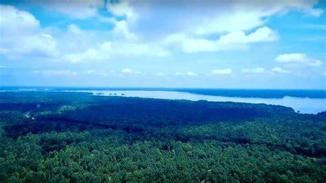 Understanding lake livingston's fluctuating tendencies. Lake Livingston Hunter's Paradise - Jacobs Properties ...