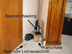 Maus Im Haus : die maus im haus frauchen freut sich besonders ueber ~ A.2002-acura-tl-radio.info Haus und Dekorationen