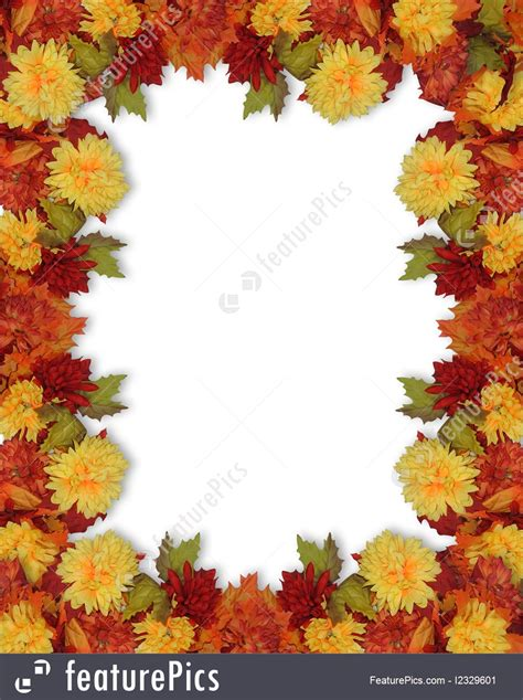 illustration  thanksgiving fall leaves  flowers border