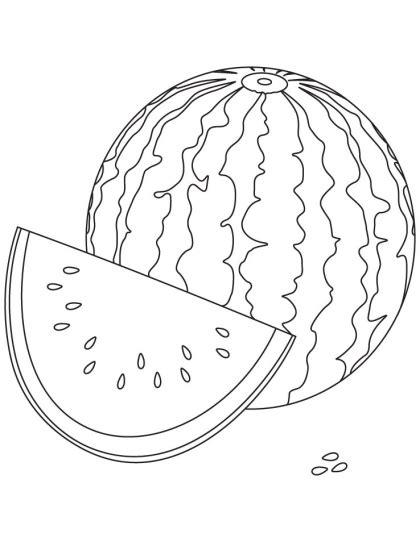 watermelon coloring page   watermelon