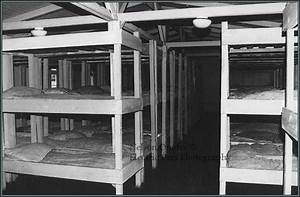 bunk beds at Sachsenhausen Concentration Camp | Berlin ...