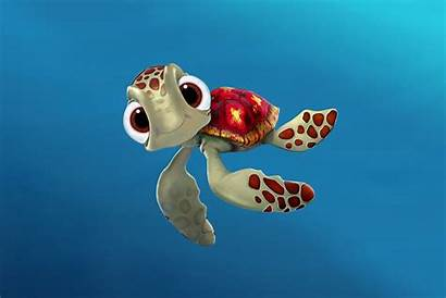 Turtle Wallpapers Turtles Sea Squirt Nemo Finding