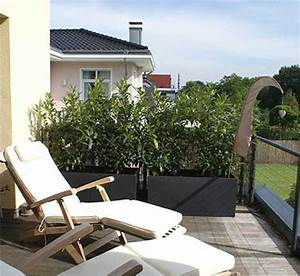 sichtschutz mit pflanzkubeln im garten auf balkon und With französischer balkon mit pflegeleichter garten pflanzen