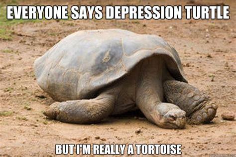 Tortoise Meme - everyone says depression turtle but i am really a tortoise funny meme