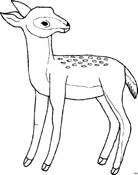 reh schaut sich um ausmalbild malvorlage tiere