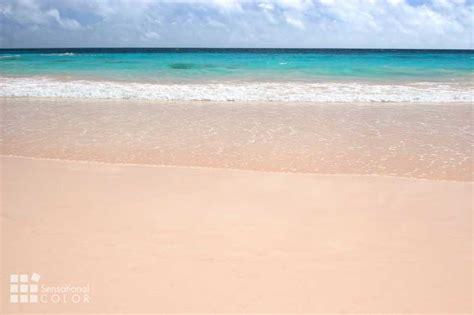 bermuda colors pink sand turquoise water pastel buildings