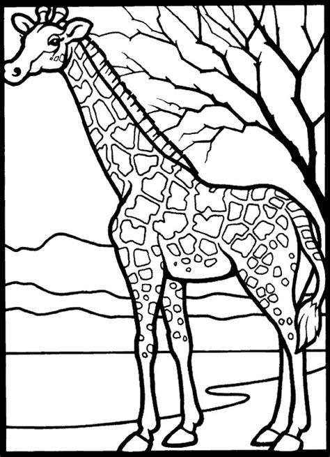 kids  funcom  coloring pages  giraffe
