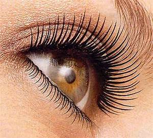 false lash rimel