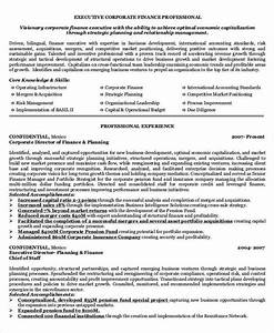 40 basic finance resume templates pdf doc free for Finance executive resume