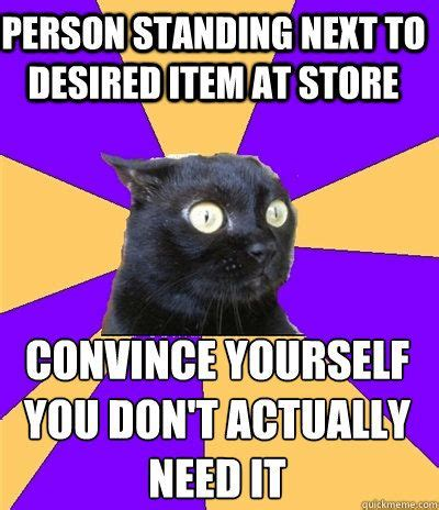 Anxiety Cat Memes - 46 best being an only child perks woes images on pinterest funny stuff thoughts and truths