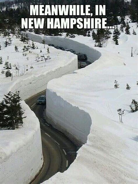 Unh Meme - meanwhile in new hshire humor funny meme nh snow pinterest