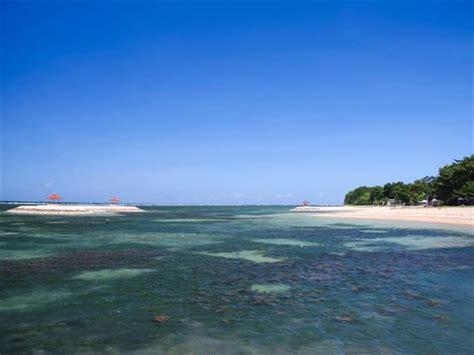 discover bali beaches ubud