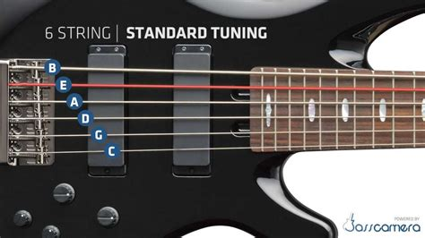 6 Strings Standard (b,e,a,d,g,c) [hd]