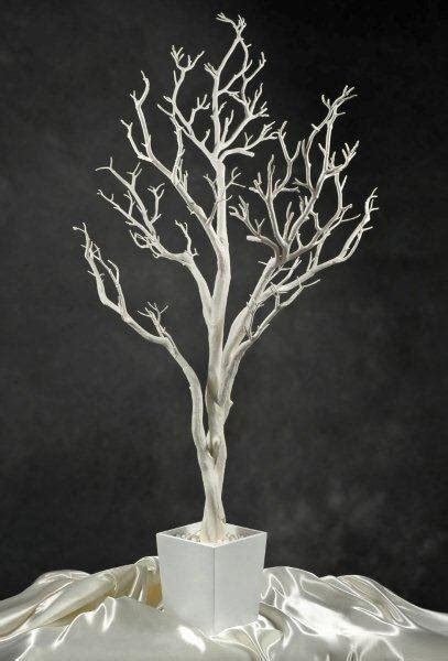 white potted wedding tree 4 foot
