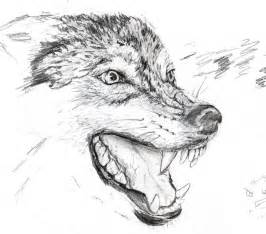 Angry Wolf Drawings