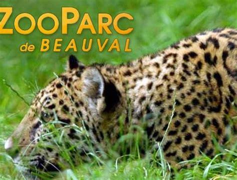 chambre hote beauval visite du zoo de beauval en segway à aignan 29634
