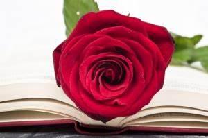 Romantik In Der Literatur : literatur romantik gdz ~ Watch28wear.com Haus und Dekorationen