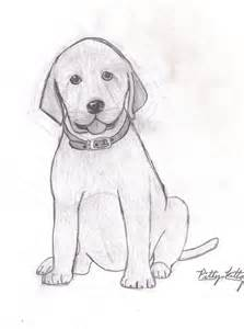 Lab Puppy Drawings Easy