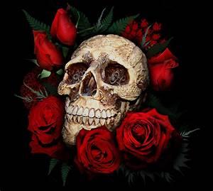 skull-red-roses-desktop-background-333230.jpg (JPEG ...