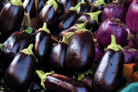 cuisiner des aubergines à la poele cinq façons de cuisiner l aubergine cmg