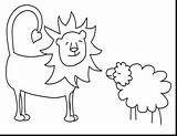 Lambs Coloringhome Gcssi sketch template