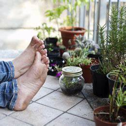 Alles Für Den Balkon : zimmerpflanzen sch ne arten f r jeden standort und pflege anspruch ~ Bigdaddyawards.com Haus und Dekorationen