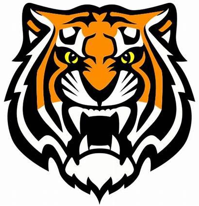 Tiger Team Athletics Welcome Whiteplainspublicschools
