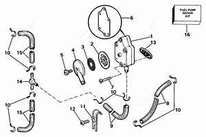 Johnson 1985 40 - J40ecob  Fuel Pump And Filter