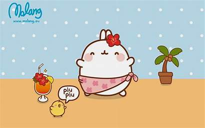 Molang Desktop Kartun Gambar Korea Mo Kawaii
