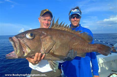 texas tilefish fishing report fishtrack grouper fish booby trap august