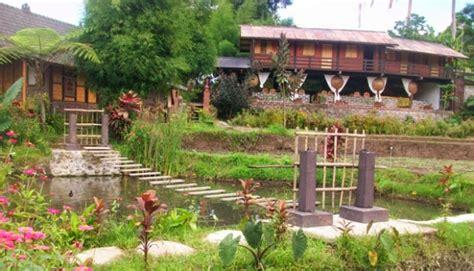 desa wisata  jogja  wajib  kunjungi