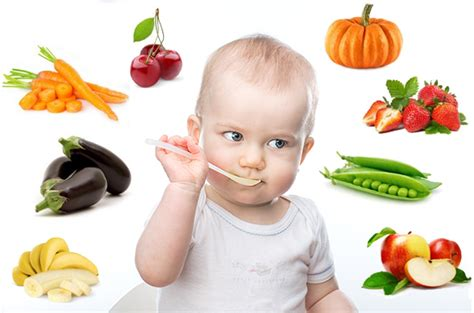 comment équilibrer des plats végétariens pour bébé cuisine de bébé