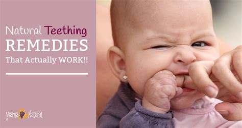 6 Natural Teething Remedies For Baby Mama Natural