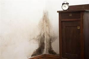 Schwarzer Schimmel Fenster : schwarzer schimmel wie ist dagegen vorzugehen ~ Whattoseeinmadrid.com Haus und Dekorationen