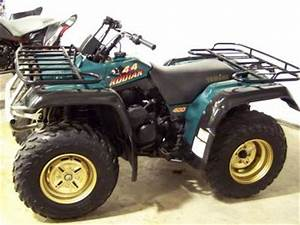 2004 Yamaha Big Bear 400 Carburetor Diagram